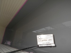 DSCN7211